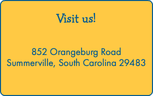 Visit us! 852 Orangeburg Road Summerville, South Carolina 29483